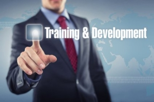 Business Man Touching Screen to Activate Training and Development